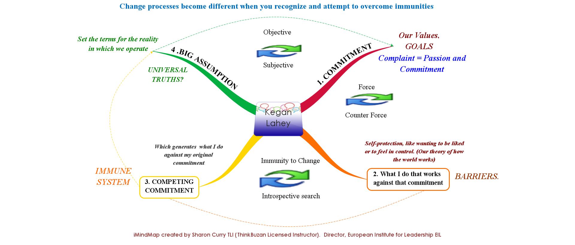 Kegan Lahey's Immunity to Change
